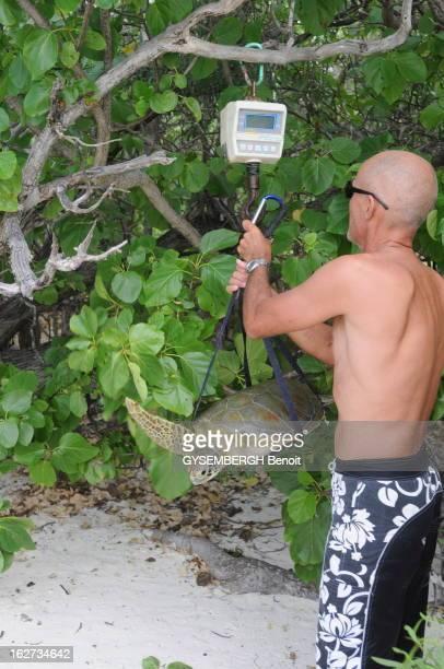 Juan Nova Island French Holding Les cinq îles Eparses appartiennent à la France et constituent le 5e district des Taaf Ce sont des ilots stratégiques...