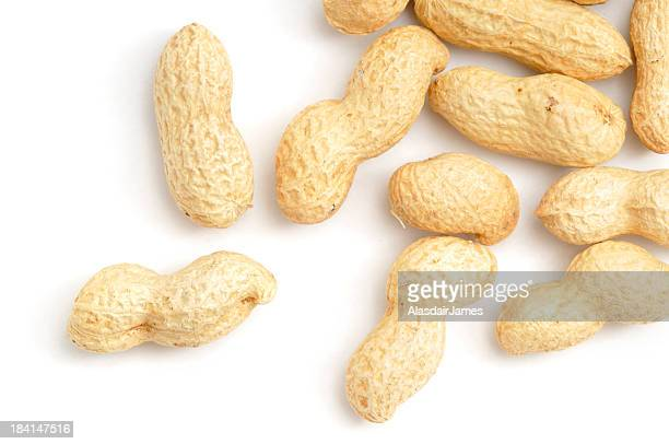 Scattered Monkey Nuts