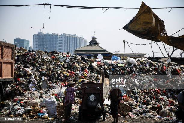 Scavengers collect recyclable plastic materials at a dumpsite in Jakarta Indonesia July 31 2019