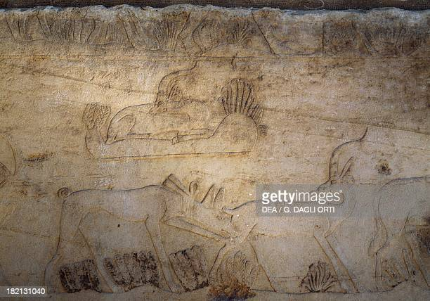 Scene depicting a dog attacking a gazelle relief access ramp to the pyramidal complex of Unis Saqqara Egyptian civilisation Old Kingdom Dynasty V