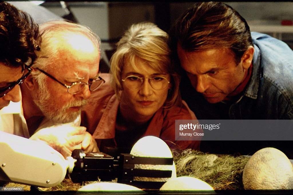 Scene from Jurassic Park : News Photo