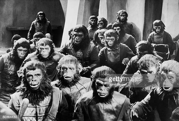 Scene from the motion picture Planet of the Apes showing apes going out hunting humans their recreational pastime