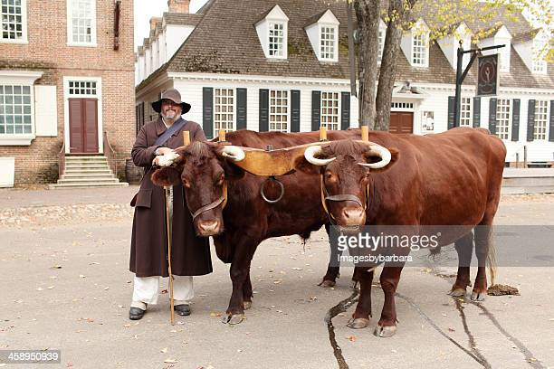 scene in colonial williamsburg - yoke stock photos and pictures