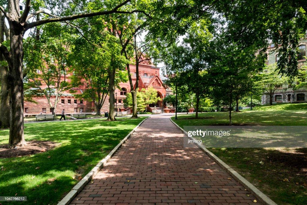 Dating scen på Columbia University