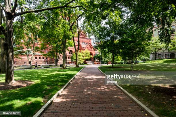 scene in the university of pennsylvania campus - university of pennsylvania stock photos and pictures
