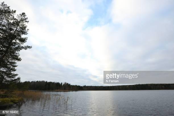 Scene of Lake in Finland
