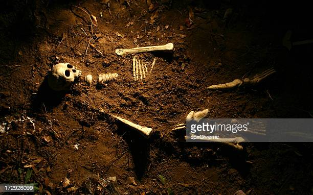 scene of the crime - human skeleton stock photos and pictures