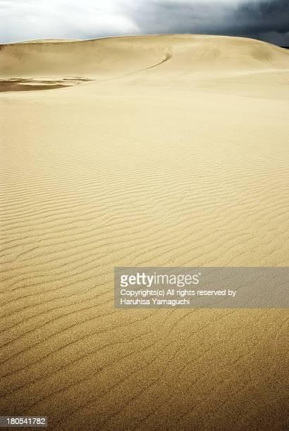 scene of tottori-dune - tottori prefecture stock photos and pictures