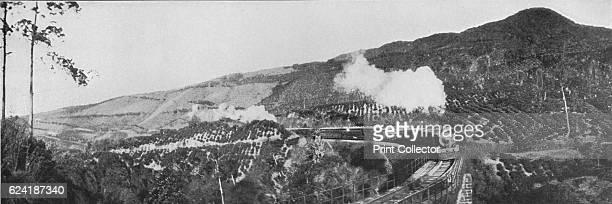 A Scene on the UpCountry Railway Passing a Tea Estate at Nanu Oya' c1890 From The Hundred Best Views of Ceylon [Plâté Ltd Colombo Kandy Nuwara Eliya...