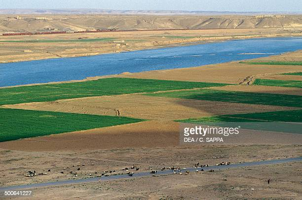 Scenery along the Euphrates River Syria