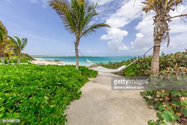 scenery from anguilla's beach in caribbean - sint maarten caraïbisch eiland stockfoto's en -beelden