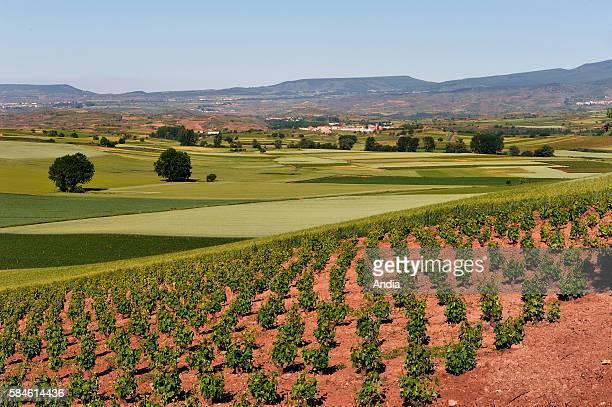 Scenery near San Millan de la Cogolla in the area of La Rioja in Spain San Millan de la Cogolla is a village located in the area of Rioja Alta...