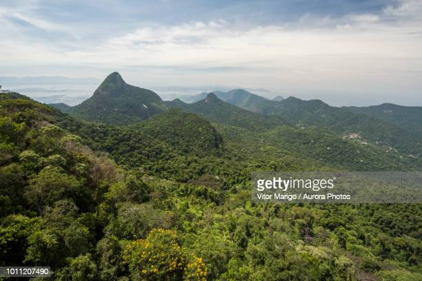 Scenery of forest and mountains, Tijuca Forest National Park, Rio de Janeiro, Brazil