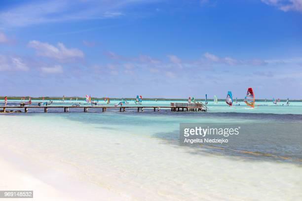 scenery paradisiaca, beach with many windsurfing - ボネール島 ストックフォトと画像