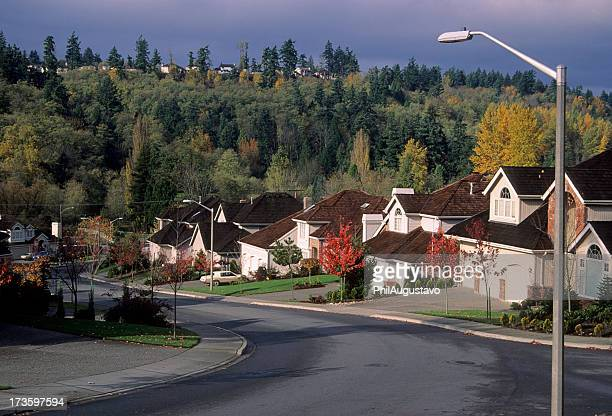 scenery view of the beautiful suburbs - cul de sac stock pictures, royalty-free photos & images