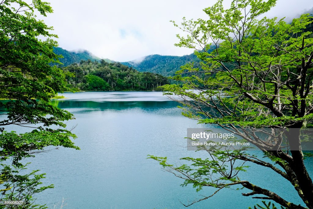 Scenery with lake, Los Lagos Trail, Huerquehue National Park, Pucon, Araucania Region, Chile : Stock Photo