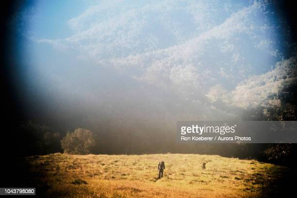 scenery with meadow and mountains in henry w. coe state park - koeberer stock photos and pictures
