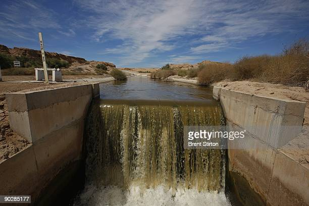 Scenes from an artifical wetland filtration system designed to purify runoff water set in an agricultural area which traditionally uses water from...
