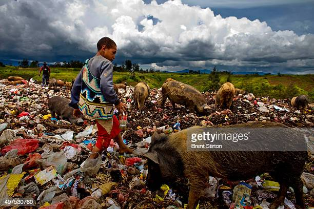 Scenes from the Dump in Mount Hagen which is populated by people who drifted to the town in the 1970's and used the dump to farm pigs a viable wealth...