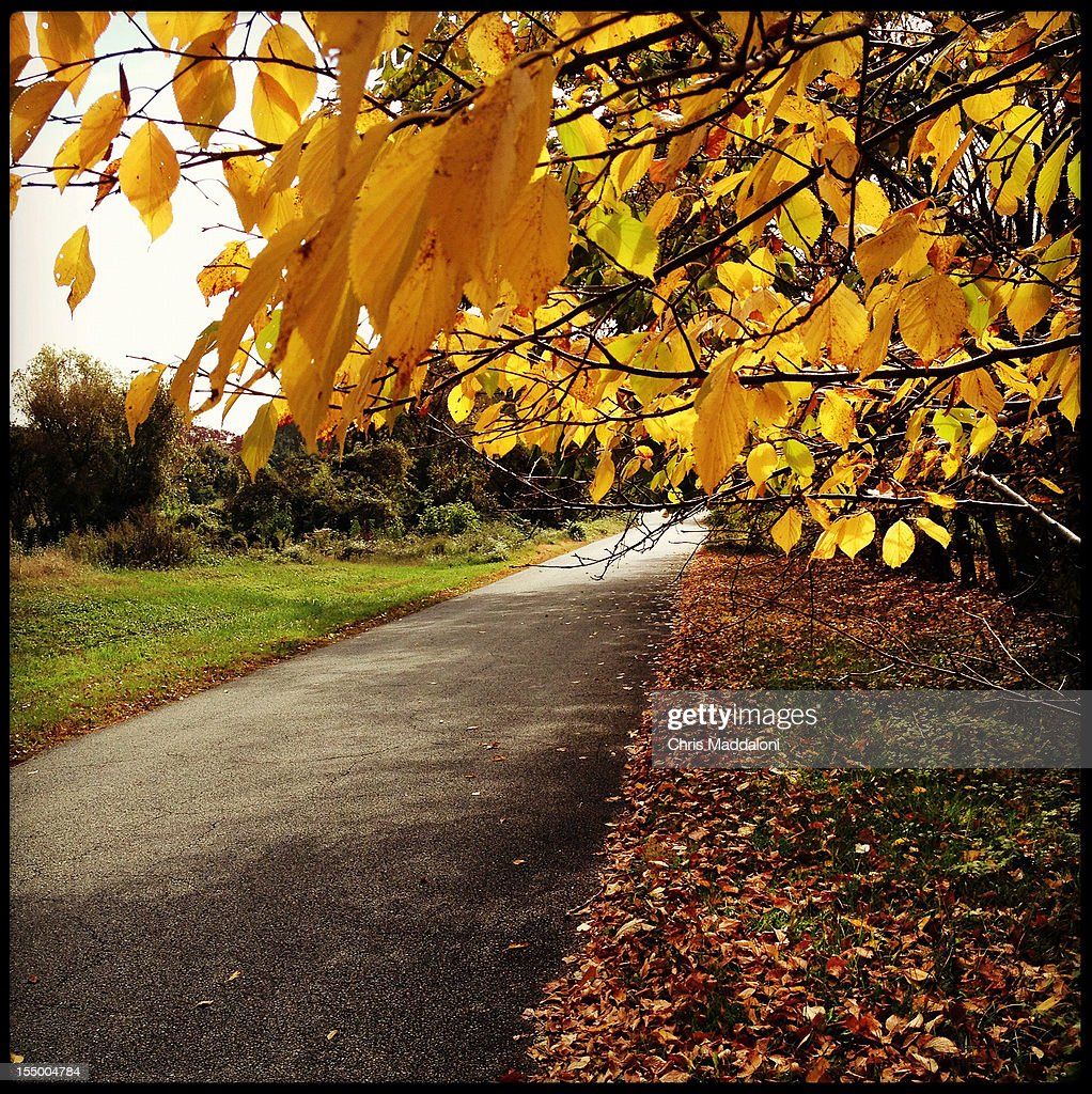Scenes of the Autumn season at the National Arboretum in Washington, D.C. - taken with the 'Instagram' app on the Iphone.