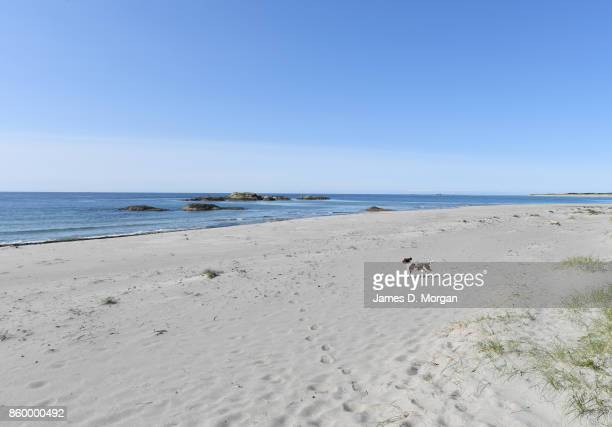 Scenes of white sand beach in southern norway in Norway in August 22nd 2017