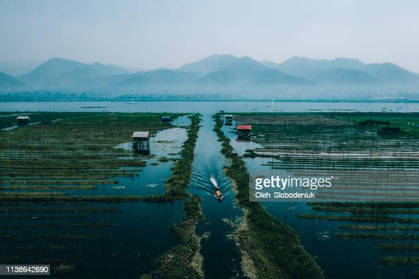 scenic aerial view of floating gardens  on inle lake - indochina stock pictures, royalty-free photos & images
