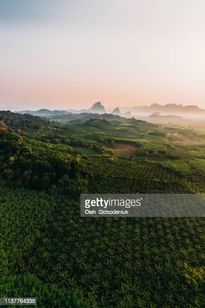 Scenic aerial view of Phang Nga at sunrise