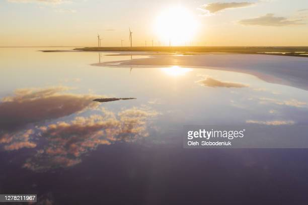 scenic aerial view of seagulls on pink salt lake near  wind turbine station - saline stock pictures, royalty-free photos & images