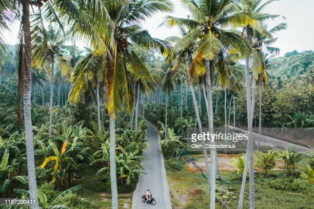 vista aérea panorámica de mujer conduciendo scooter en las selvas de nusa penida - bali fotografías e imágenes de stock