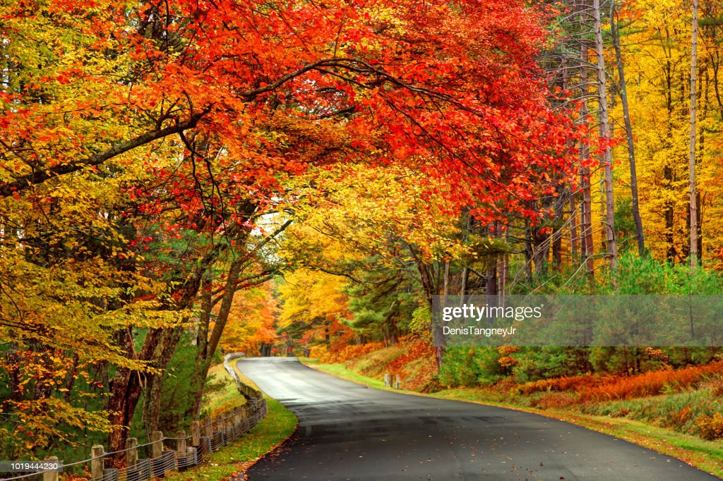 Estrada panorâmica de outono na área do parque de reservatório de Quabbin de Massachusetts : Foto de stock