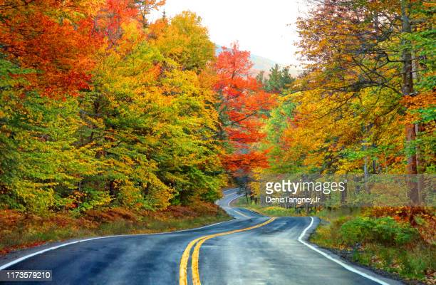 scenic autumn road in the white mountians of new hampshire - new hampshire stock pictures, royalty-free photos & images