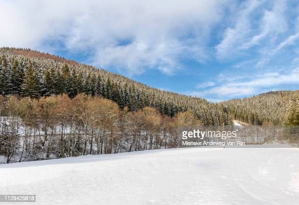 scenic countryside in winter season, oberkirchen, in the sauerland, germany. - lucht fotografías e imágenes de stock