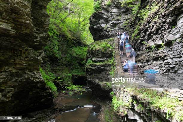 scenic gorge with visitors walking on trail at watkins glen state park - finger lakes stock pictures, royalty-free photos & images