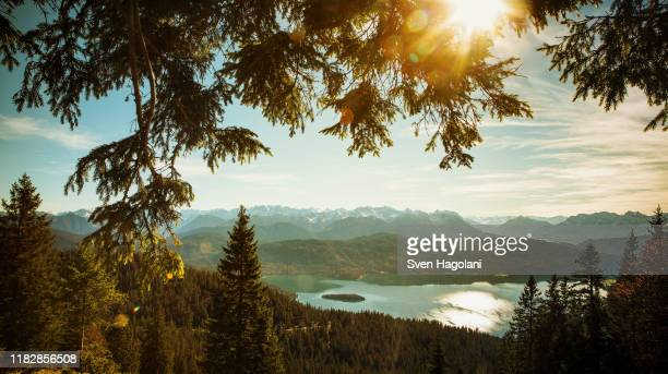 scenic, idyllic view walchensee lake and mountains, bayern, germany - bayern stock pictures, royalty-free photos & images