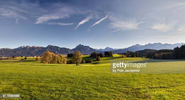 scenic landcape of bavaria - meadow stock photos and pictures