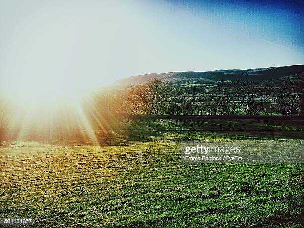 Scenic Landscape Flooded With Bright Sunshine