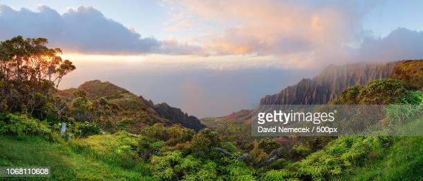 scenic landscape of tropical island - ghana stock pictures, royalty-free photos & images