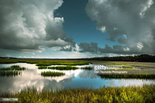 scenic landscape - jacksonville florida stock pictures, royalty-free photos & images