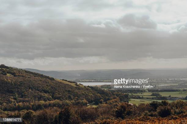 scenic landscape view of nature reserve from mendip hills, somerset, uk, on a sunny autumn day. - hill stock pictures, royalty-free photos & images