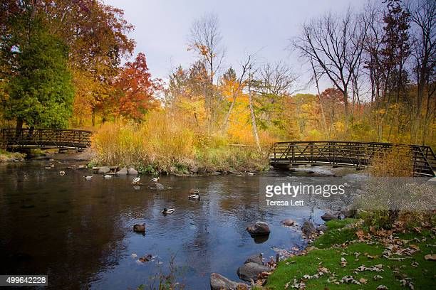 scenic landscape with two bridges - kalamazoo stock pictures, royalty-free photos & images