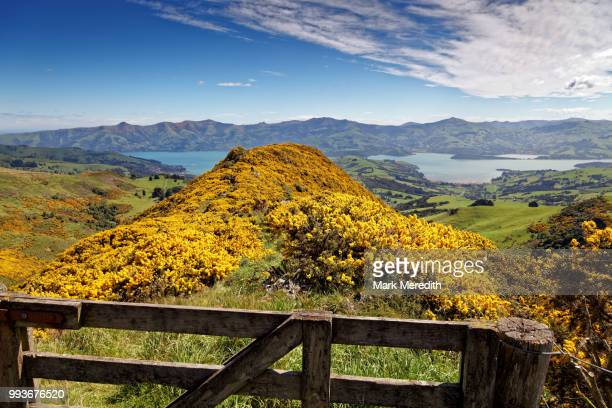 Scenic outlook high on Banks Peninsula from Summit Road