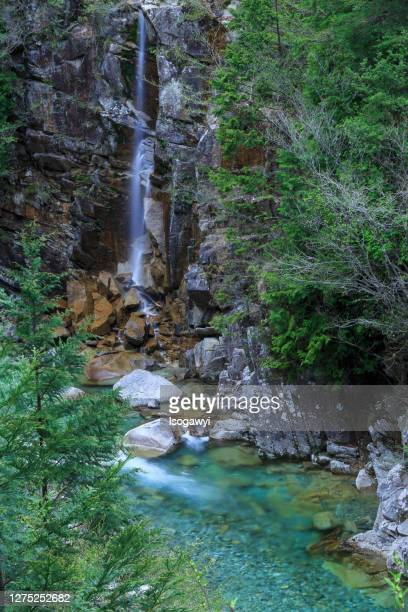 a scenic ravine and waterfalls in early summer - isogawyi stock pictures, royalty-free photos & images