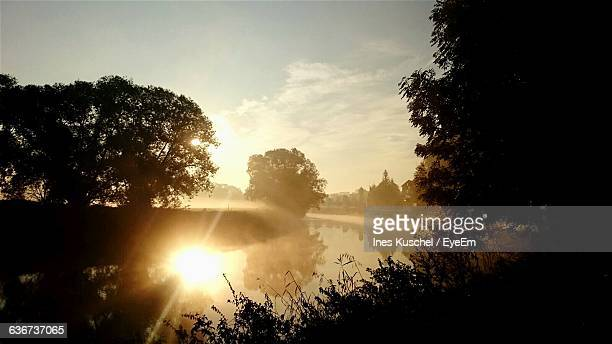 scenic reflection of silhouette trees in lake at sunset - zwickau stock pictures, royalty-free photos & images