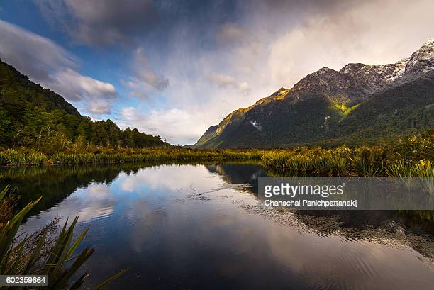 scenic reflection on mirror lake in new zealand - reflection lake stock photos and pictures