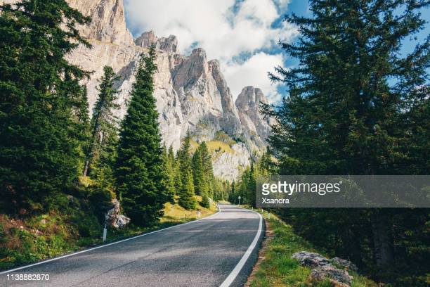 scenic road through the forest in the dolomites alps, italy - véneto imagens e fotografias de stock