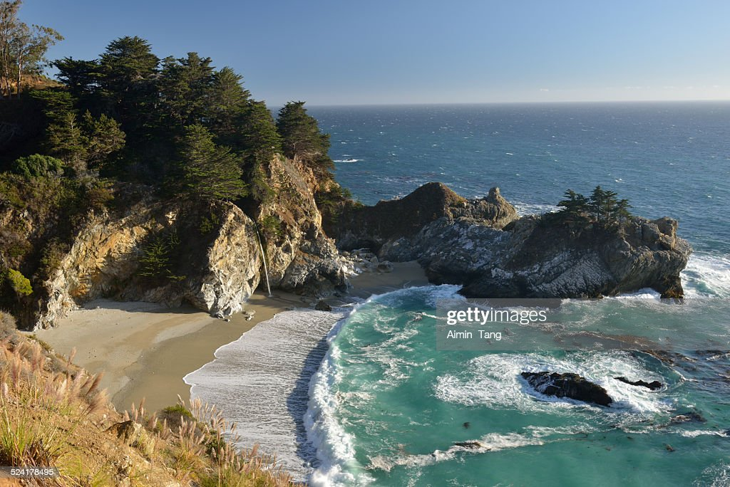 Scenic shore at Julia Pfeiffer Burn State Park : Stock Photo