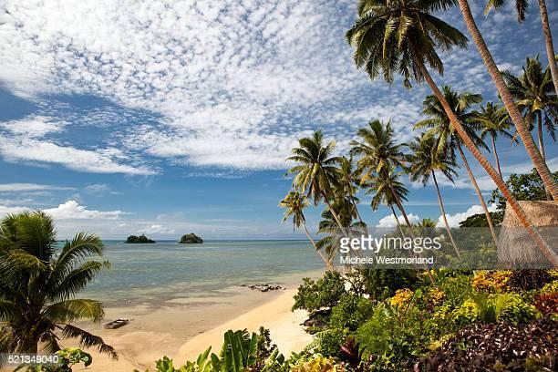scenic shoreline of taveuni, fiji - フィジー ストックフォトと画像