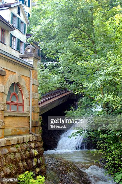 Scenic shot of a waterfall and river under a tree behind a building in St. Gallen, Switzerland.