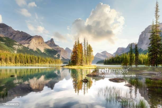 scenic summer view at spirit island, maligne lake, jasper national park, alberta, canada - meeroever stockfoto's en -beelden