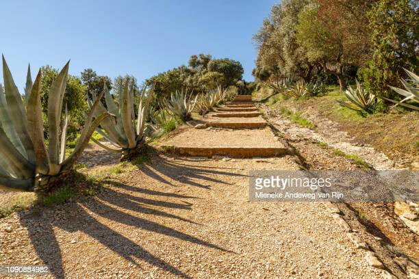 Scenic trail leading to the Doric Temple of Segesta, Sicily, Italy